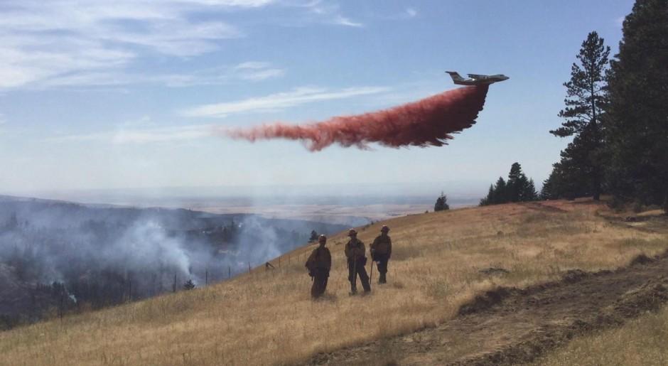 Blue Creek Fire 01