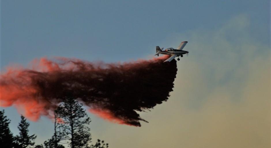 Glenrosa wildfire brighter 2016
