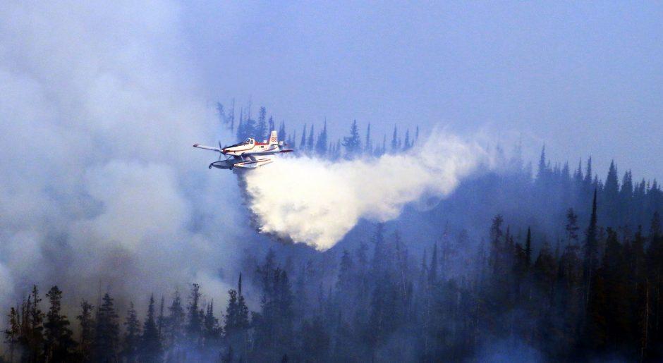 Lamb Creek fire - Cranbrook - Linda Botterill-2